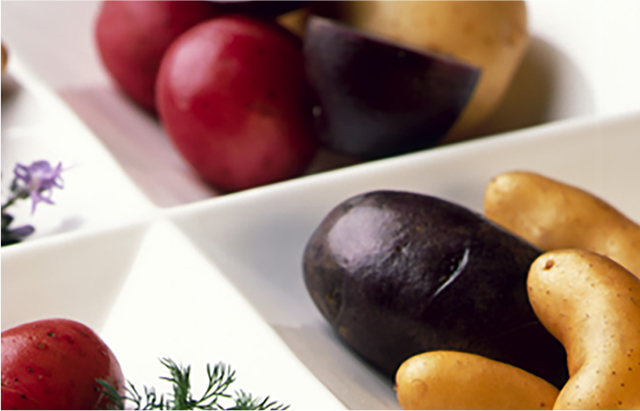 Various types of colorful potatoes in rectangular partitions